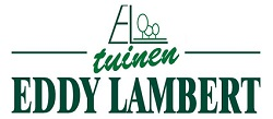 eddy lambert - site